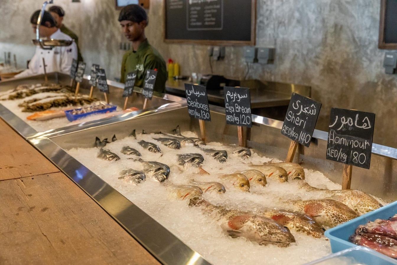 Al Barsha Fresh Seafood Market Display